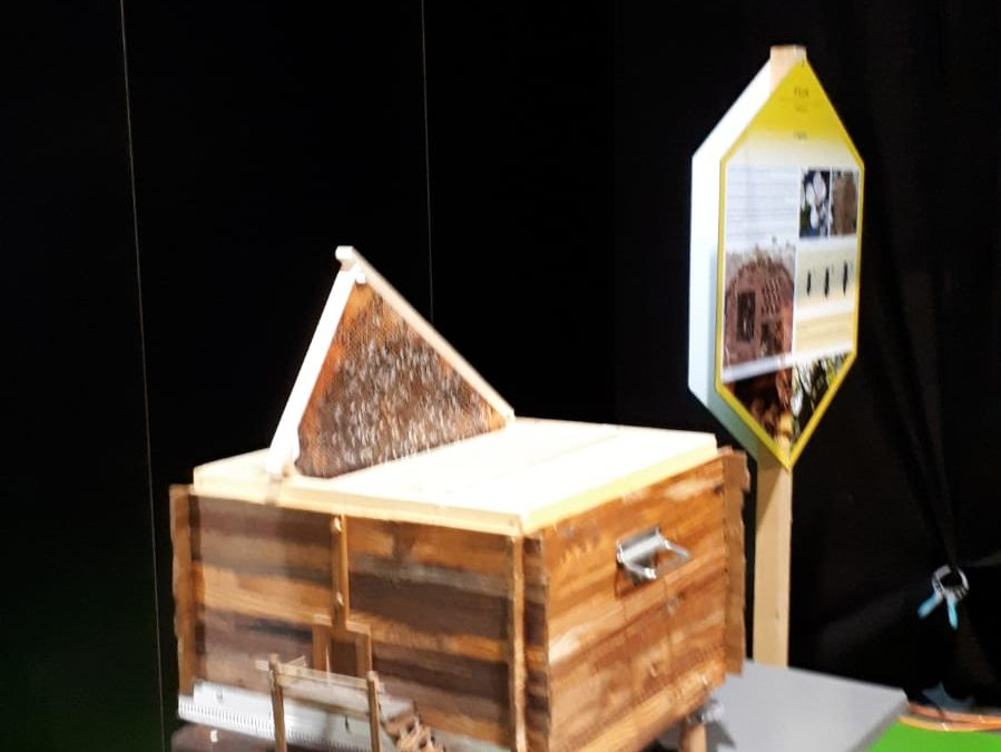L'Association de l'Abeille en Fête au salon Epicuria à Martigny